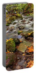 Portable Battery Charger featuring the photograph In The Forest In Fall by Hans Franchesco