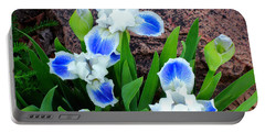 Portable Battery Charger featuring the photograph In The Garden - Blue-eyes Iris by Chholing Taha