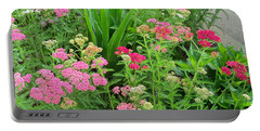 Portable Battery Charger featuring the photograph In The Garden - Yarrow by Chholing Taha