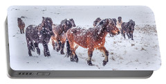 In The Storm 2 Portable Battery Charger