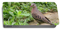 Inca Dove Portable Battery Charger