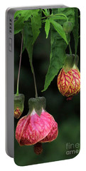 Indian Mallow Portable Battery Charger