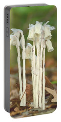 Indian Pipes Portable Battery Charger