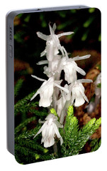 Portable Battery Charger featuring the photograph Indian Pipes On Club Moss by Meta Gatschenberger