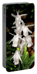 Indian Pipes On Club Moss Portable Battery Charger by Meta Gatschenberger