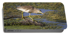 Indian Pond-heron Portable Battery Charger