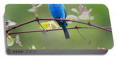 Indigo Bunting Perched Square Portable Battery Charger