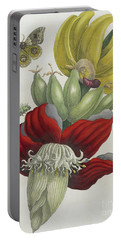 Inflorescence Of Banana, 1705 Portable Battery Charger by Maria Sibylla Graff Merian
