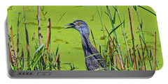 Inmature Black Crowned Heron. Portable Battery Charger