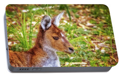 Portable Battery Charger featuring the photograph Inner Peace, Yanchep National Park by Dave Catley