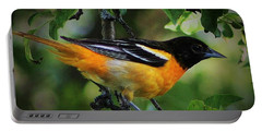 Inquisitive Oriole Portable Battery Charger