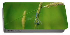 Portable Battery Charger featuring the photograph Insect On Straw, May 2016.  by Leif Sohlman