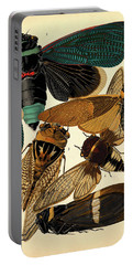 Insects, Plate-1 Portable Battery Charger