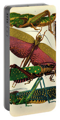 Insects, Plate-7 Portable Battery Charger