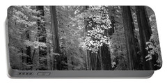 Inside The Groves Of The Redwoods Portable Battery Charger