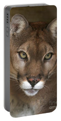 Intense Cougar Portable Battery Charger