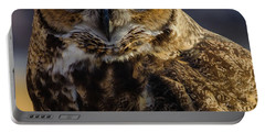 Intense Owl Portable Battery Charger