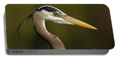 Intensity Of A Heron Portable Battery Charger