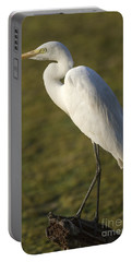 Intermediate Egret Portable Battery Charger