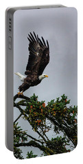 Into Flight Portable Battery Charger