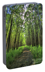 Portable Battery Charger featuring the photograph Into The Forest by DJ Florek