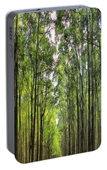 Portable Battery Charger featuring the photograph Into The Forest I Go by DJ Florek