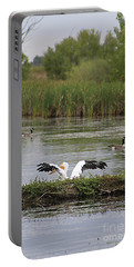 Portable Battery Charger featuring the photograph Into The Water by Alyce Taylor