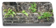 Intrepid Ferns Portable Battery Charger