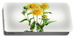 Inula Portable Battery Charger