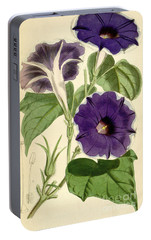 Ipomoea Nil Portable Battery Charger by Joseph Dalton Hooker