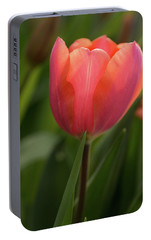 Portable Battery Charger featuring the photograph Iridescent Tulip by Mary Jo Allen