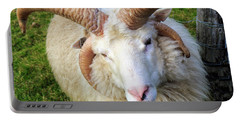 Islandic Sheep With Two Sets Of Horns Portable Battery Charger by Allan Levin