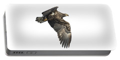 Portable Battery Charger featuring the photograph Isolated Eagle 2017-2 by Thomas Young