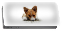 Portable Battery Charger featuring the photograph It Wasn't Me Corgi by Mariella Wassing