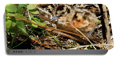 It's A Baby Woodcock Portable Battery Charger