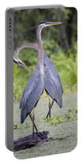 I've Got Your Back Portable Battery Charger by Betsy Knapp