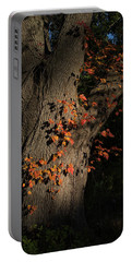 Ivy In The Fall Portable Battery Charger