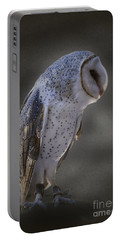 Ivy The Barn Owl Portable Battery Charger