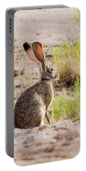 Portable Battery Charger featuring the photograph Jackrabbit by Allen Sheffield