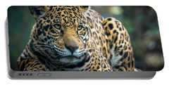 Portable Battery Charger featuring the photograph Jaguar by Lisa L Silva