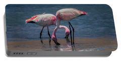 James's Flamingos, Salar De Uyuni, Bolivia Portable Battery Charger