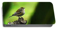 Portable Battery Charger featuring the photograph January Migration by Debby Pueschel