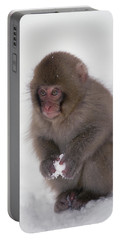 Japanese Macaque Macaca Fuscata Baby Portable Battery Charger