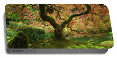 Japanese Maple Tree Bathed In Sunlight Portable Battery Charger