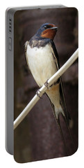 Swallow Portable Battery Charger
