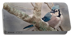 Cold Winter's Jay Portable Battery Charger