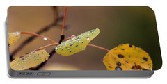 Jewels Of Autumn Portable Battery Charger