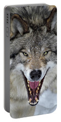 Portable Battery Charger featuring the photograph Joker by Tony Beck