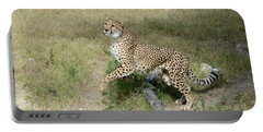 Portable Battery Charger featuring the photograph Jump 2 by Fraida Gutovich
