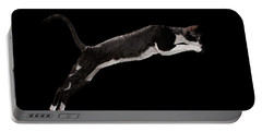 Jumping Cornish Rex Cat Isolated On Black Portable Battery Charger